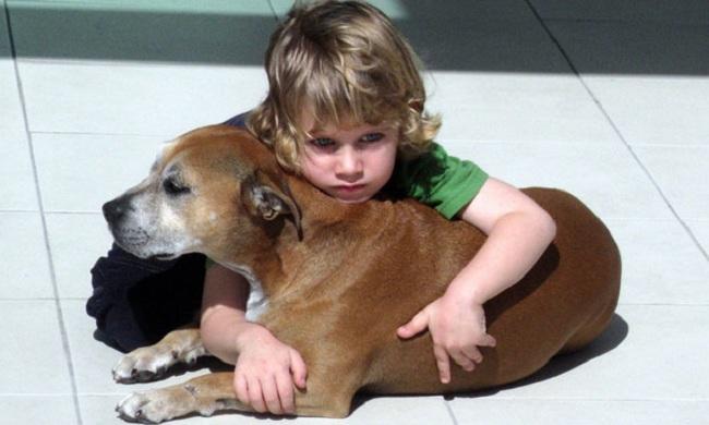 Почему люди живут дольше, чем животные?, Автор неизвестен, Бочонок Мёда для Сердца