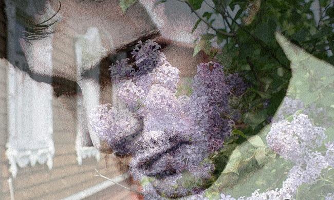 Голос мамы, Крисанова, Бочонок Мёда для Сердца