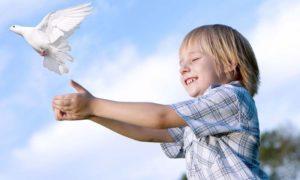 Ангел-хранитель, Живая Книга