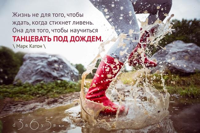 Жизнь не для того чтобы ждать когда стихнет ливень, Марк Катон, Бочонок Мёда для Сердца