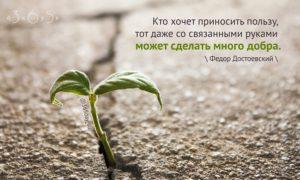 Кто хочет приносить пользу, тот даже со связанными руками может сделать много добра, Фёдор Достоевский, Бочонок Мёда для Сердца