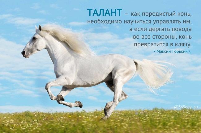 Талант - как породистый конь, Максим Горький, Бочонок Мёда для Сердца