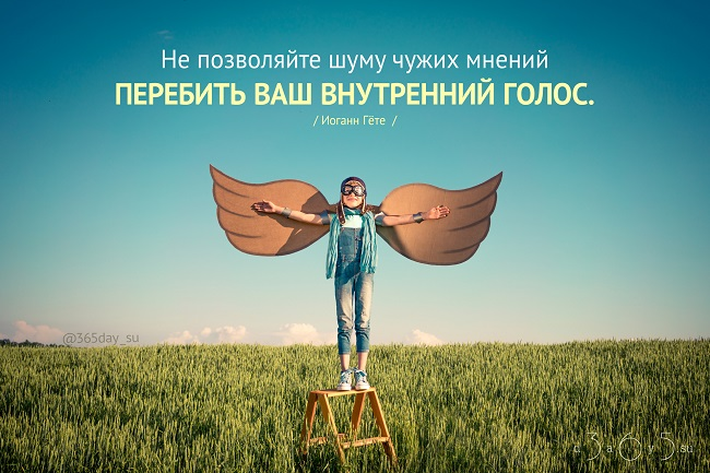 Не позволяйте шуму чужих мнений перебить ваш внутренних голос, Иоганн Гёте, Бочонок Мёда для Сердца