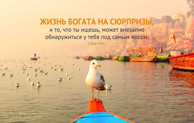 Жизнь богата на сюрпризы, и то, что ты ищешь, может внезапно обнаружиться у тебя под самым носом, Олег Рой, Бочонок Мёда для Сердца