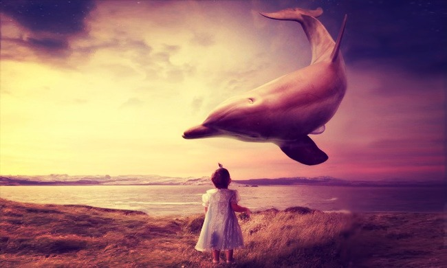 Мои дельфины, Юлия Кошелева, Бочонок Мёда для Сердца