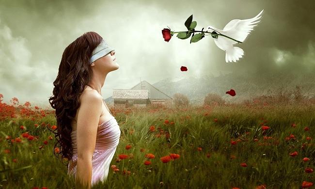 Самые красивые розы, Агнесса Вайлин Джонс, Бочонок Мёда для Сердца
