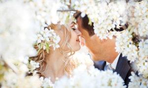 Мечта о красивой любви, Дарья Юсупова, Бочонок Мёда для Сердца
