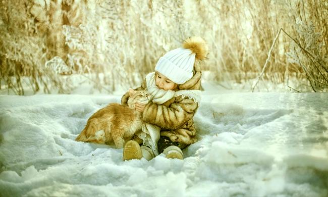 Пальто для кошки, Елена Крапивка, Бочонок Мёда для Сердца