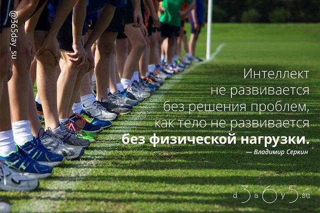 Интеллект не развивается без решения проблем, как тело не развивается без физической нагрузки, Владимир Серкин, Бочонок Мёда для Сердца